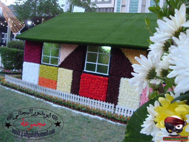 صور بيت من الورد الطبيعي بمكة المكرمة . domain-bfe24f5b8a.jpg