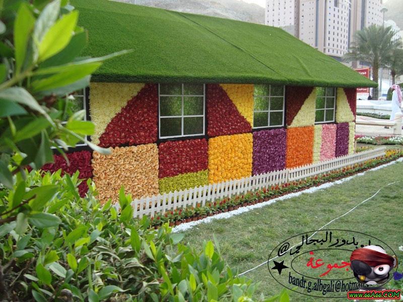 منزل مصنوع من الورد الطبيعي بمكة  Domain-5f2ae41902