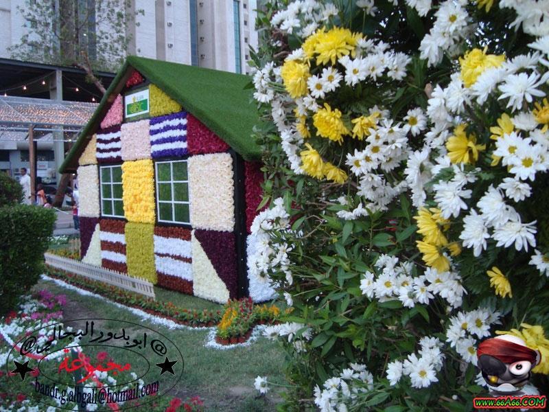 منزل مصنوع من الورد الطبيعي بمكة  Domain-614ad48333
