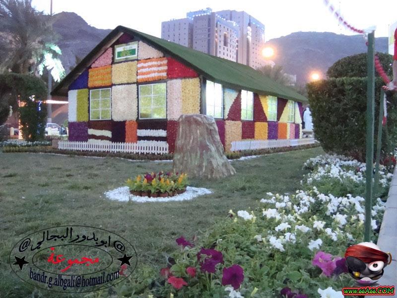 منزل مصنوع من الورد الطبيعي بمكة  Domain-bca1869cdb