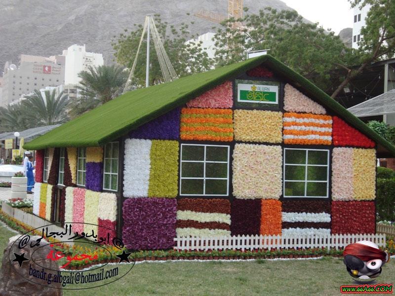 منزل مصنوع من الورد الطبيعي بمكة  Domain-ed0b64bdc7